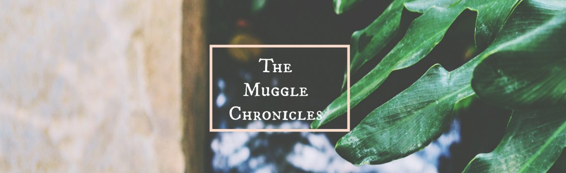 The Muggle Chronicles